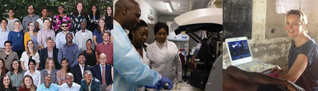 3 images of fogarty fellows in group and lab settings