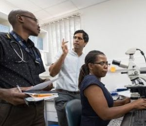 three people working with microscope